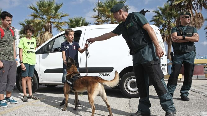 Guardia Civil sola 1180092003 73523421 667x375